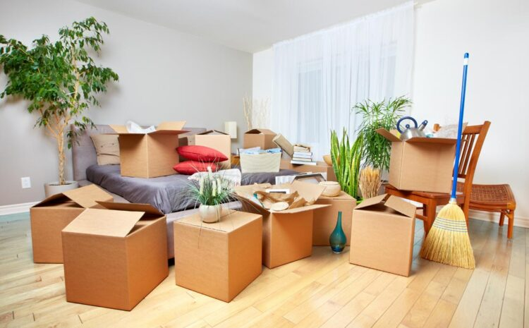 Movers and Packers: What are the Essentials?